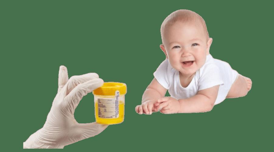 Анализ мочи ребенка